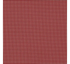 Vichy Tiny Printed Gingham - Rustic Red