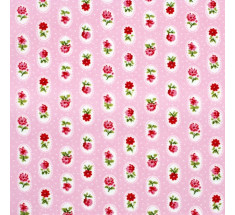 Lorna Small Floral - Baby Pink