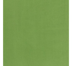 Plain Babycord 21 Whale - Pastel Green